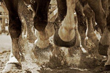 Horsepower in Action (Sepia)
