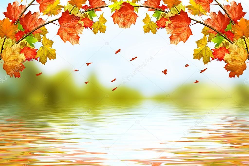 Baixar Imagens Bonitas: Paisagem De Outono. Folhas De Outono Bonitas. Outono