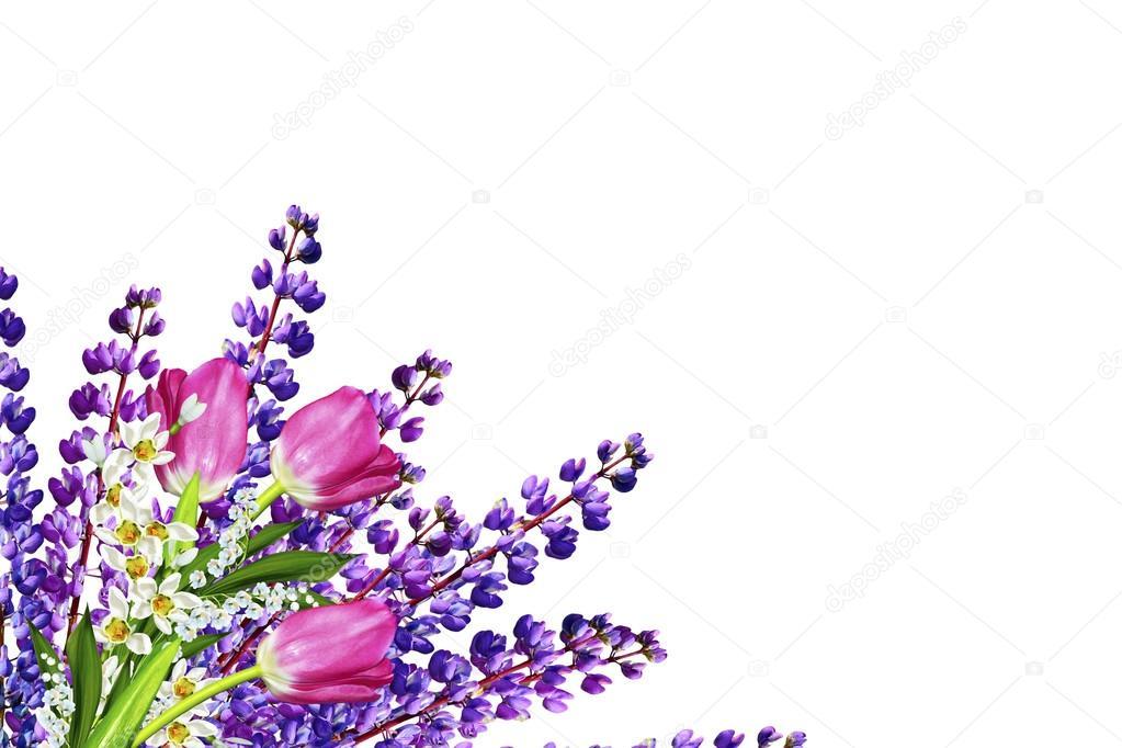 Названия и фото всех садовых цветов голубого цвета