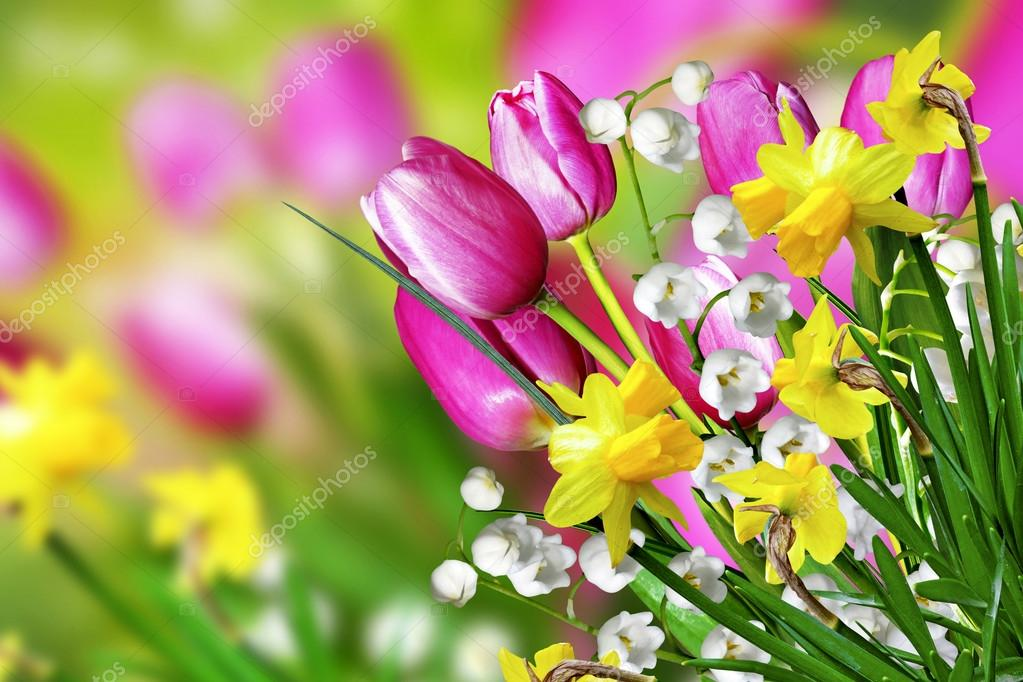 Spring flowers tulips and lilies of the valley stock photo spring flowers tulips and lilies of the valley stock photo mightylinksfo Image collections