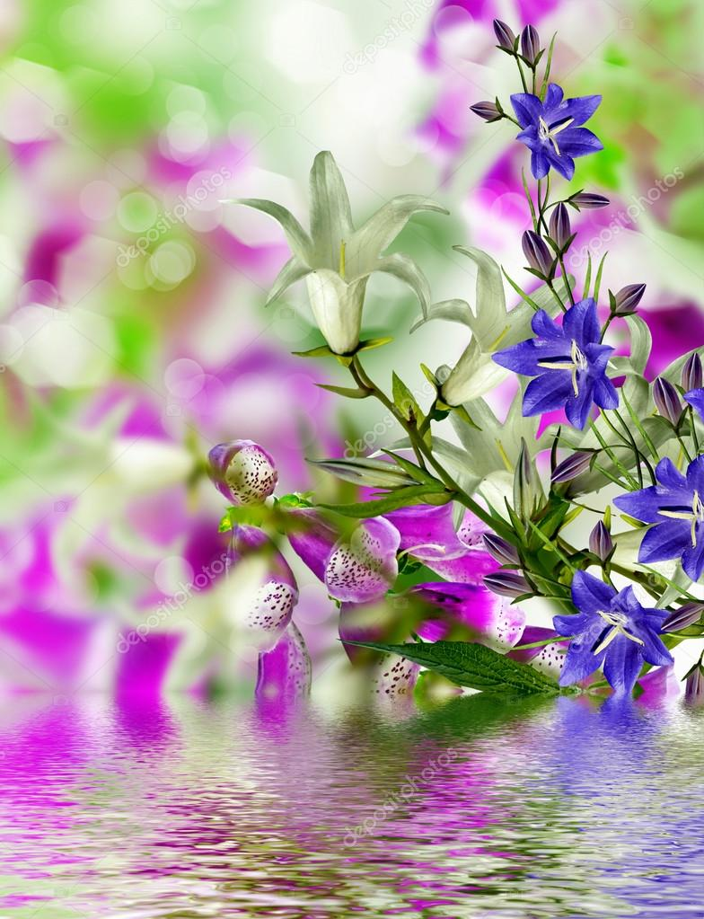 Summer landscape. flowers bells