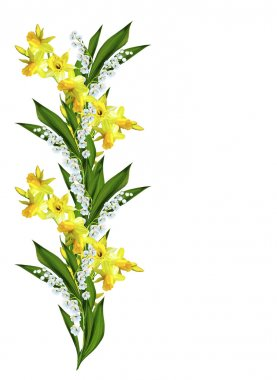 Spring flowers daffodils and lilies of the valley isolated on wh