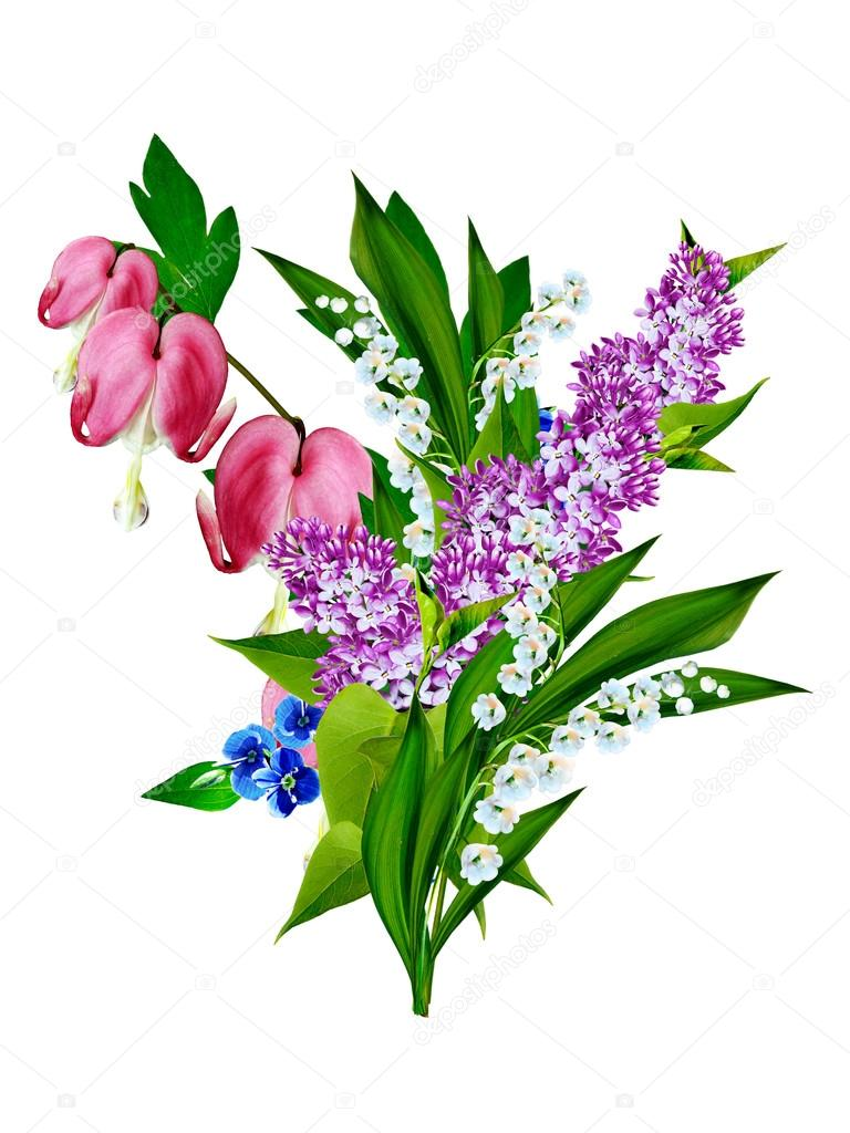 Pink bleeding heart flower stock photo alenalihacheva 89410902 pink bleeding heart flower stock photo izmirmasajfo