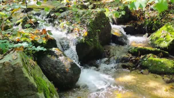vody tekoucí přes mechové skály