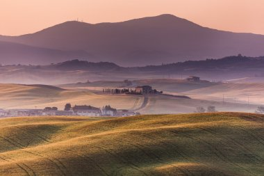 Early morning on countryside, San Quirico d Orcia, Tuscany, Italy