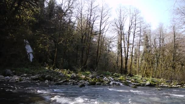 Horská vodopád a řeka v rokli
