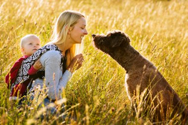 Mother, daughter and a dog in a meadow