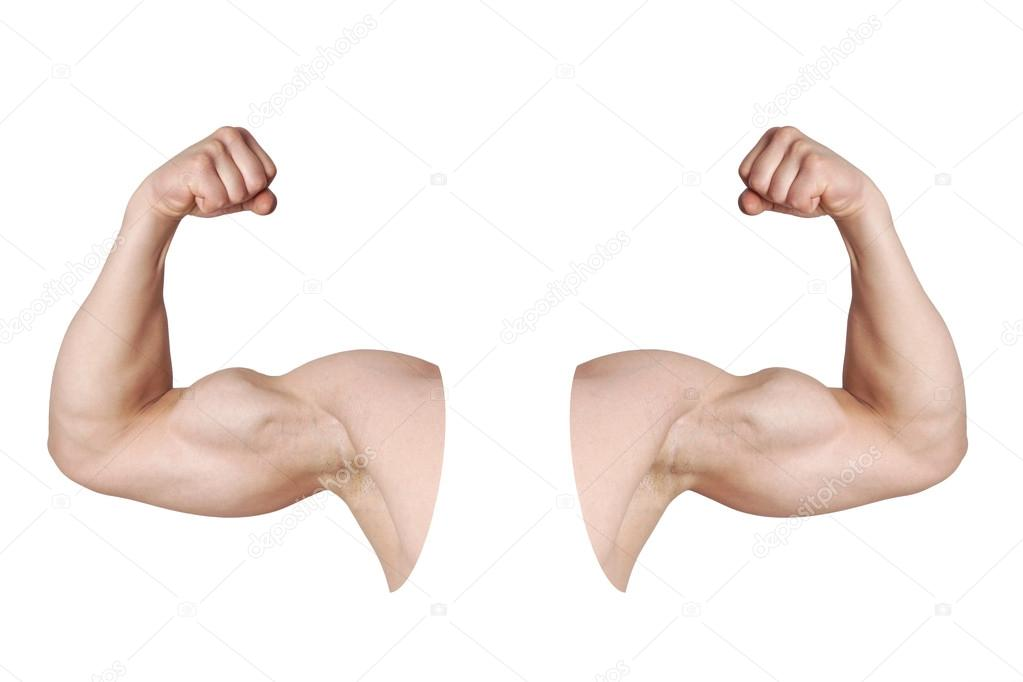männlich Arme mit gebeugtem Bizeps Muskeln — Stockfoto © buecax ...