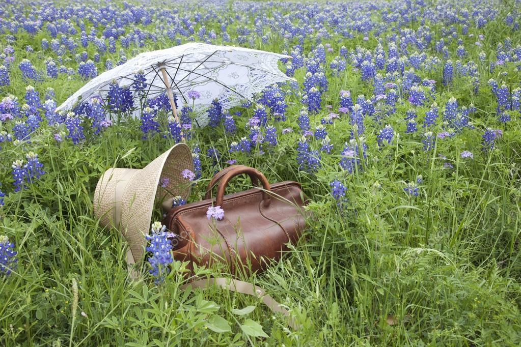 Old suitcase,bonnet and parasol in a field of bluebonnets