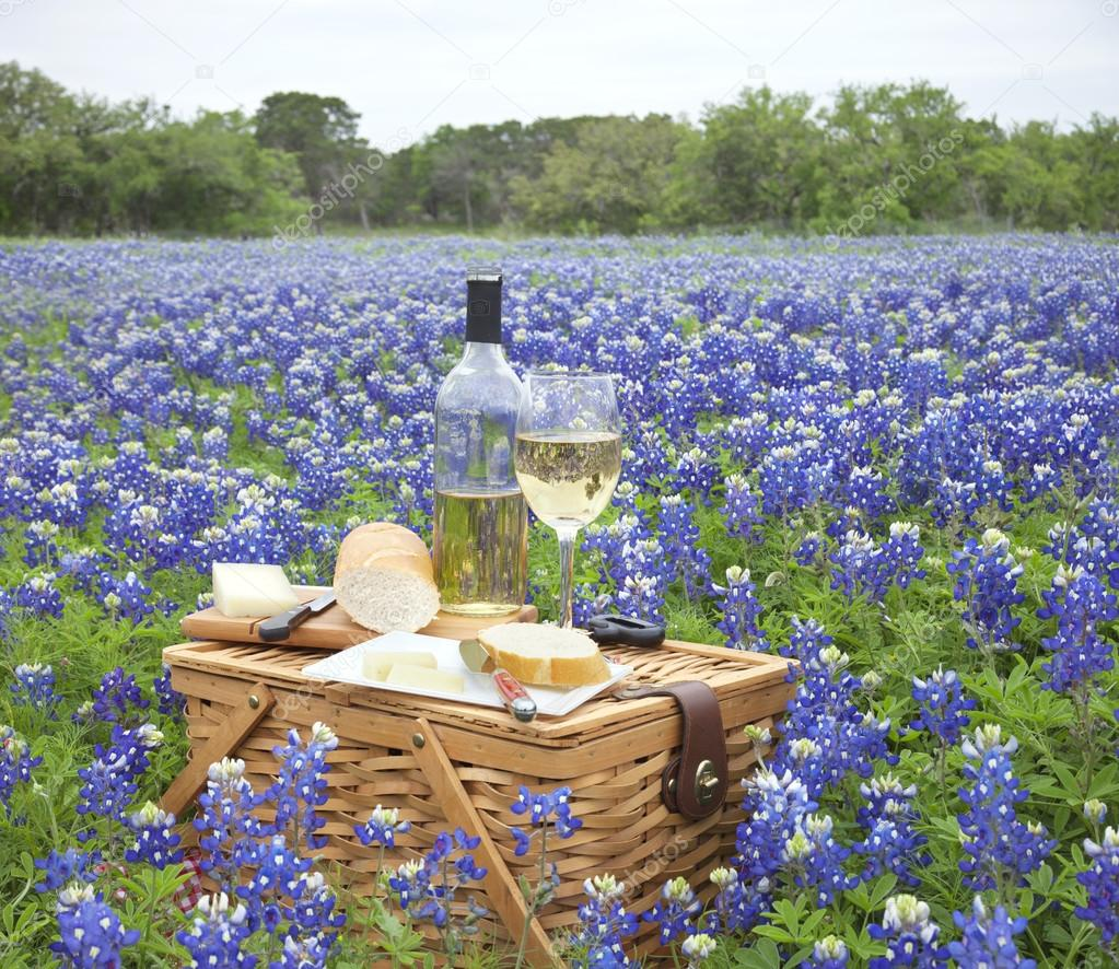 Picnic basket with wine, cheese and bread in a Texas Hill Countr