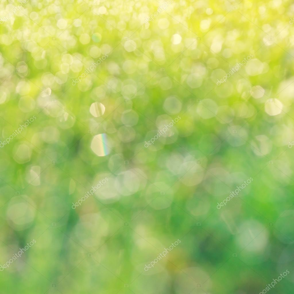 drops of dew on a green grass bokeh