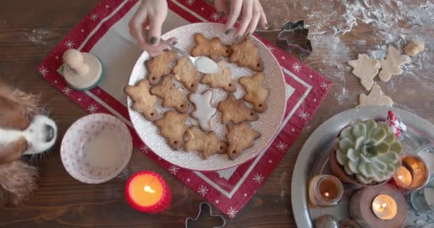 A young woman with her dog in the kitchen has cooking gingerbreads for Christmas and New Year and is decorating them with glaze. View from above