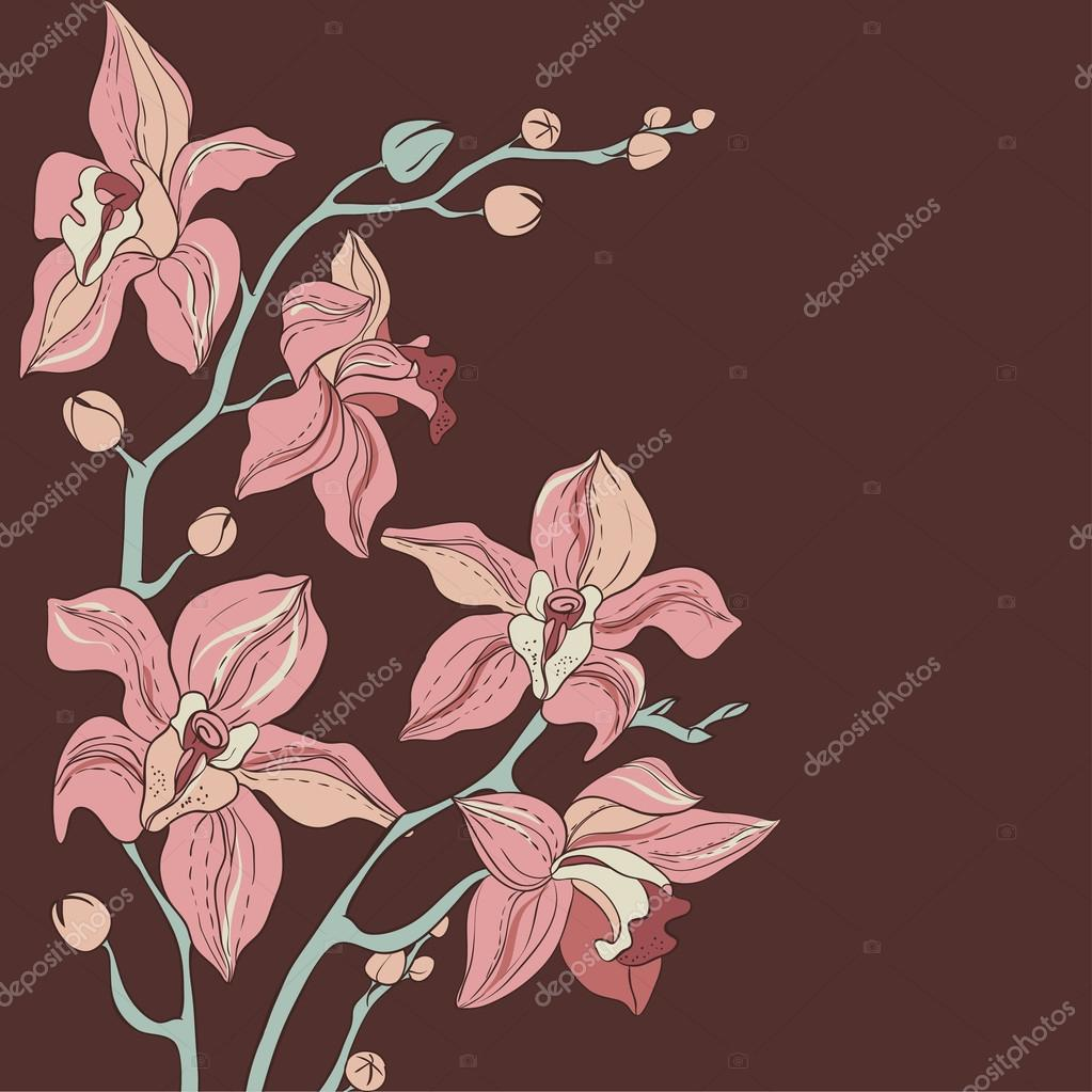 Vector Bouquet of Orchids