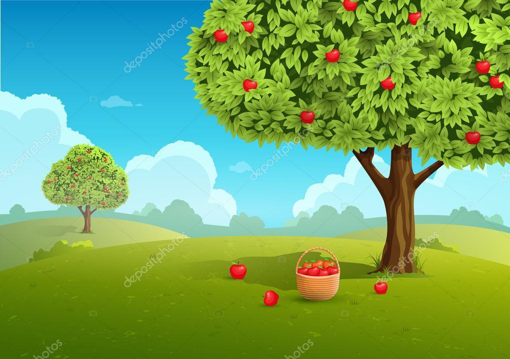 Apple orchard illustration