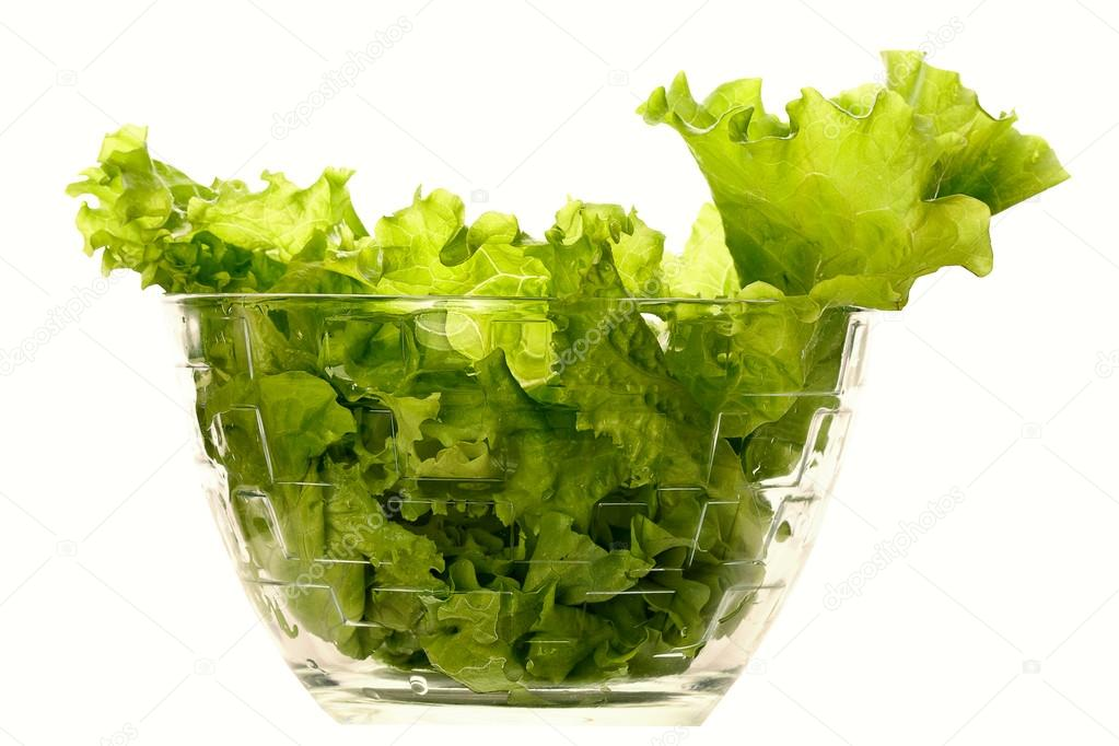 Fresh Lettuce one leaf isolated on white background  close-up