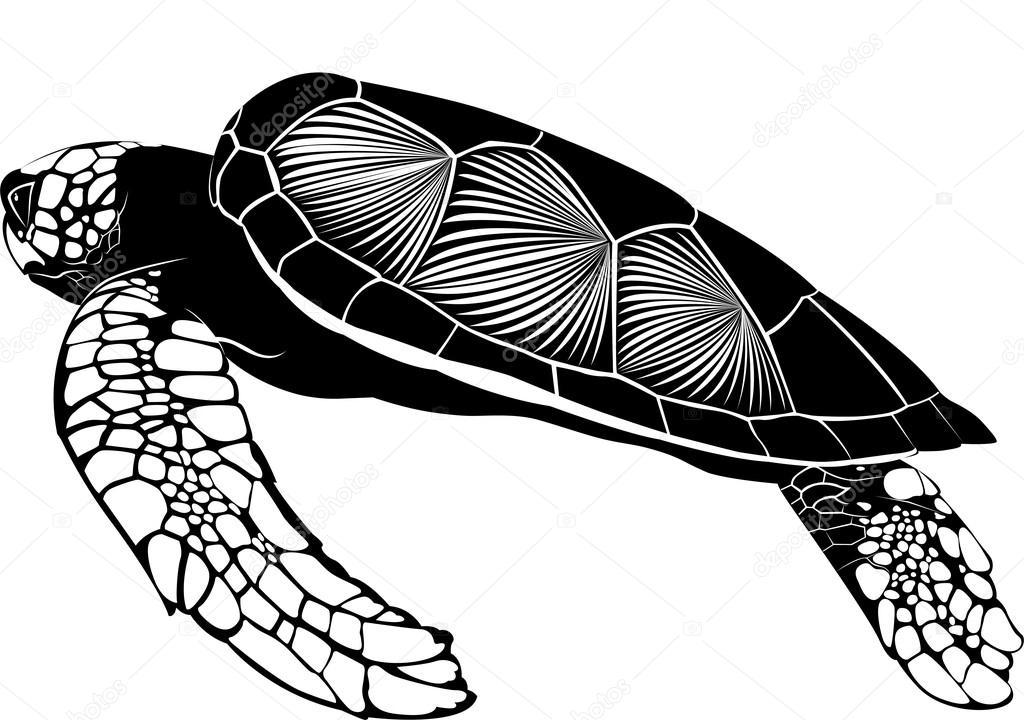 Big turtle silhouette