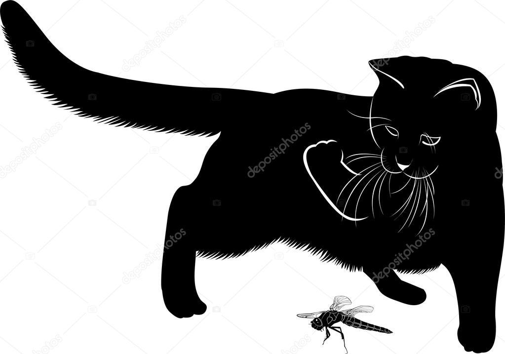 Silueta De Gato Jugando Silueta De Gato Y Libélula Vector De