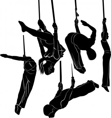 silhouettes of professional gymnasts
