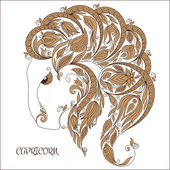 Zodiac sign - Capricorn.