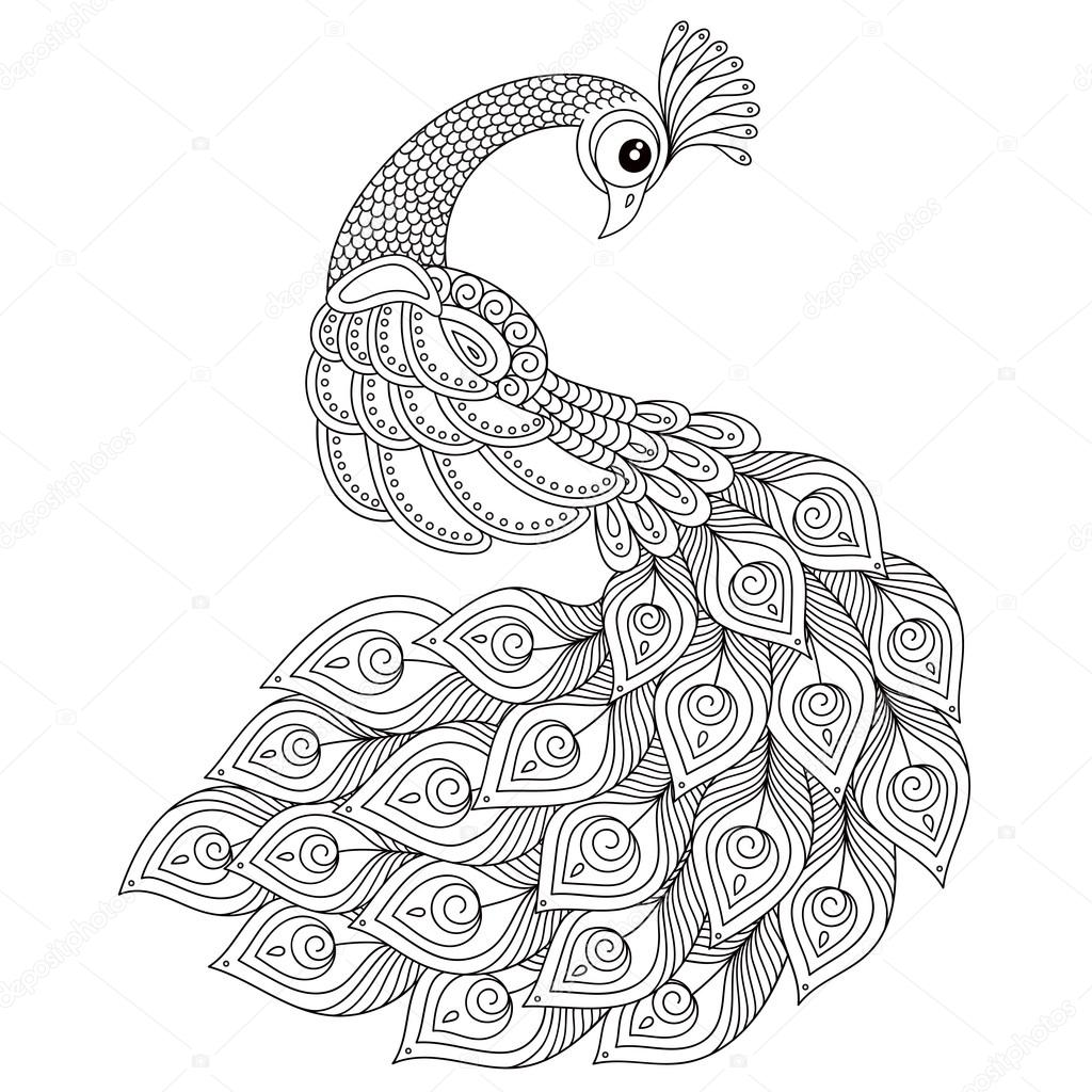 Peacock Adult Antistress Coloring Page Stock Vector Karpenyuk