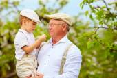 Netter Opa mit Enkel an der Hand im Frühlingsgarten