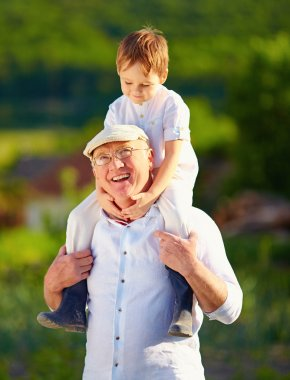 Happy grandson sitting on shoulders of grandpa, countryside
