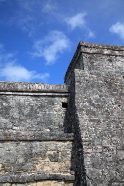 Ancient Mayan stone temple