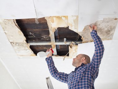 man cleaning mold on ceiling.
