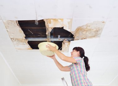 Young Woman Collecting Water In basin From Ceiling. Ceiling pane