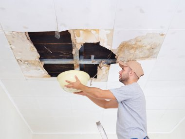Man Collecting Water In basin From Ceiling. Ceiling panels damag