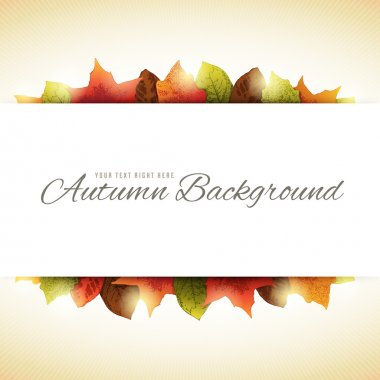 Background with Autumn Leaves and White Horizontal Copy Space in