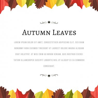 Autumn Background with Leaves at the Top and Bottom