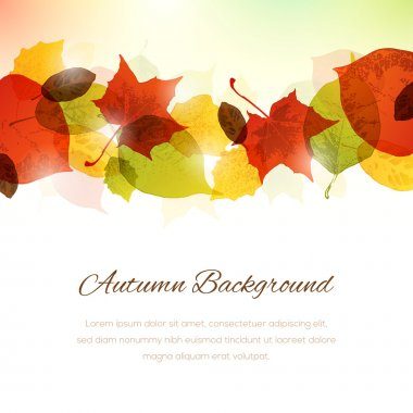 Background with Autumn Leaves at the Top and Copy Space at the B