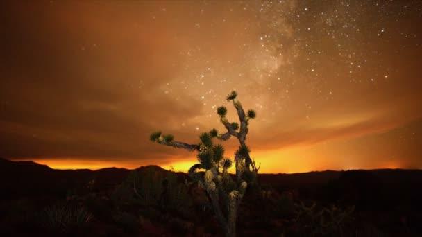Časová prodleva Joshua stromy v noci