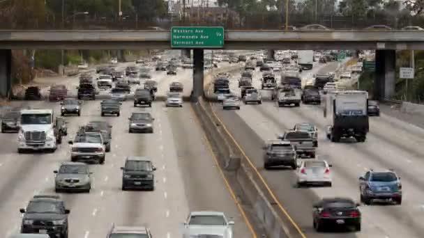 Traffic on Busy Freeway