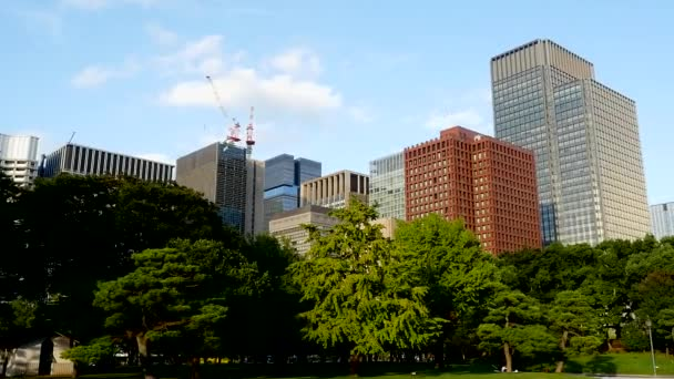Office Buildings Surrounded by Trees