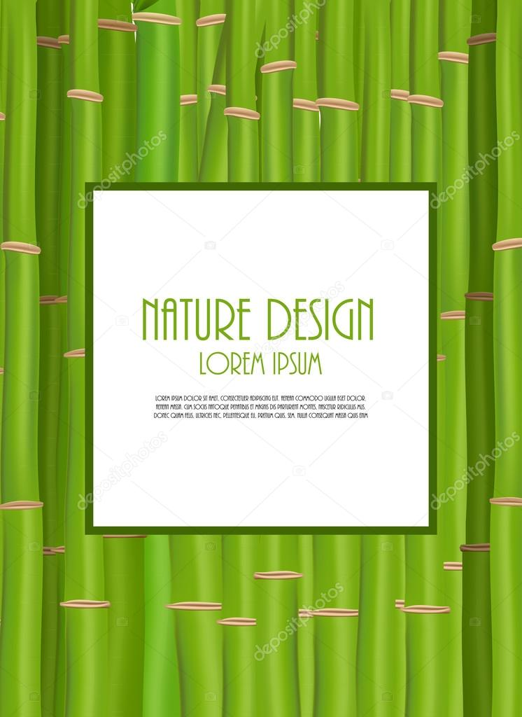 Colorful Stems and Bamboo Leaves Background. Vector Illustration