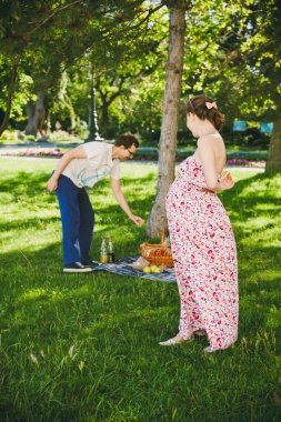 Young family to a picnic
