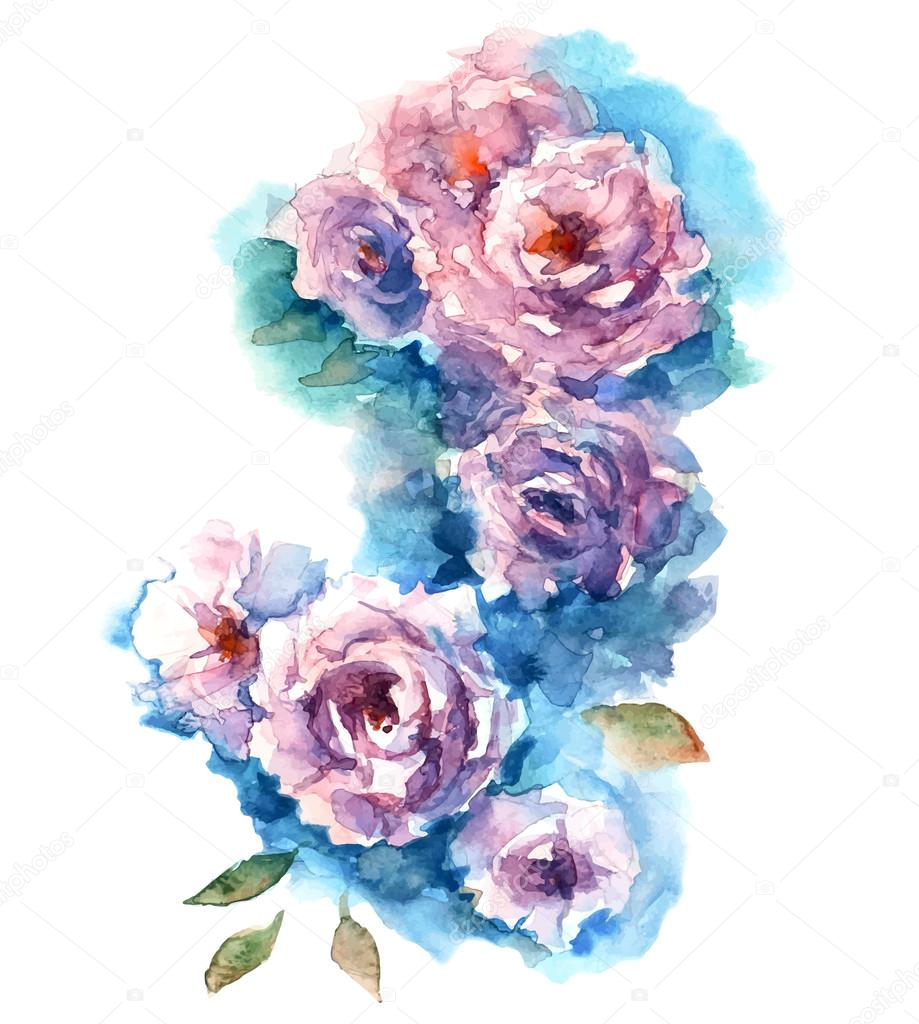 Roses watercolor sketch. Vector illustration.