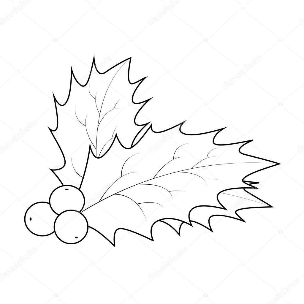 Sagoma Di Bacca Di Agrifoglio Natale Foglie E Frutti Icona Simbolo