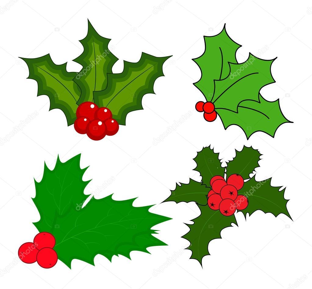 Bacca Dell Agrifoglio Foglie Di Natale E Icona Di Frutti Simbolo