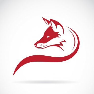 Vector image of an fox head on white background