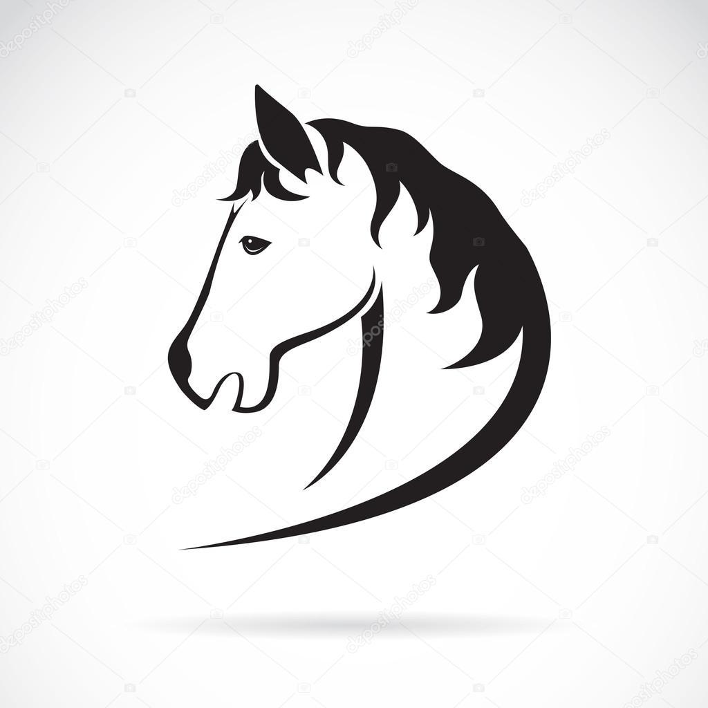Image vectorielle d 39 un dessin de t te de cheval sur fond - Image tete de cheval ...