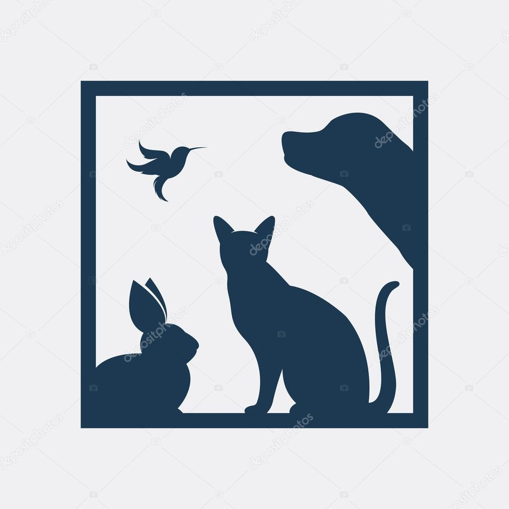 Vector group of pets in the frame - Dog, cat, bird, rabbit, Isol ...