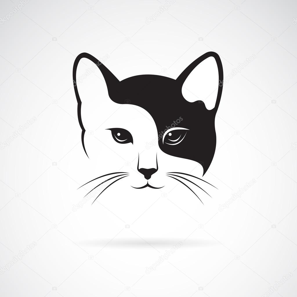 Áˆ Cat Faces Drawing Stock Drawings Royalty Free Cat Face Pictures Download On Depositphotos