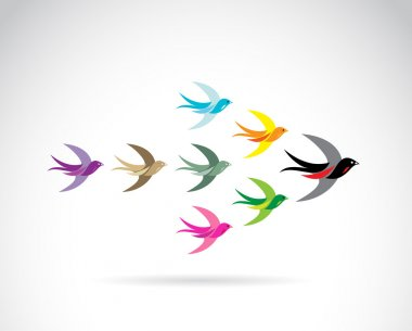 Vector Group of colorful swallow birds. Teamwork concept