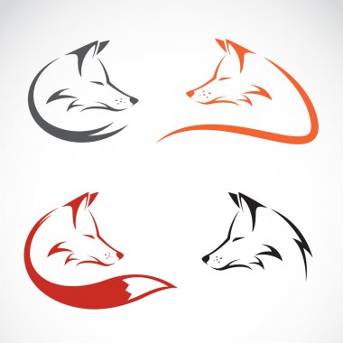 Vector image of an fox design on white background stock vector