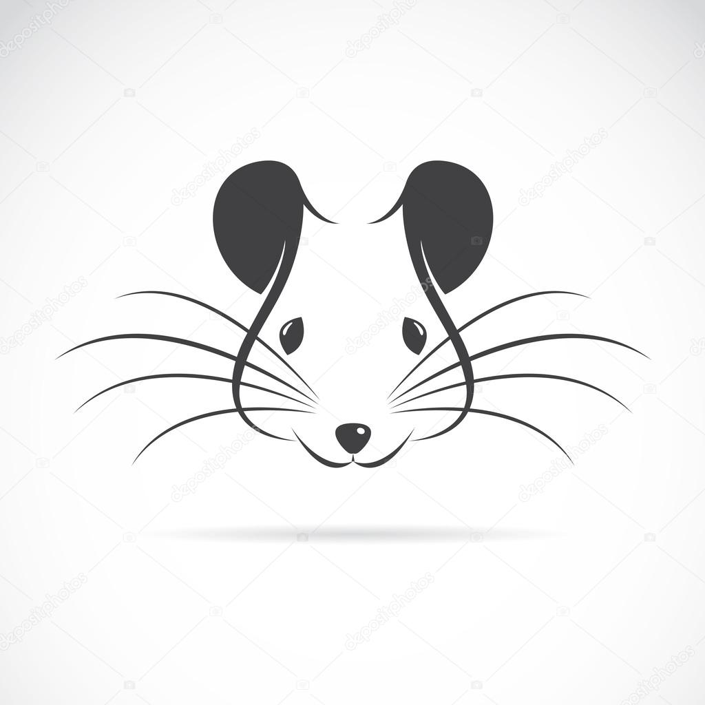 Vector image of an rat head