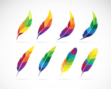Vector group of an feathers design