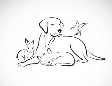 """Картина, постер, плакат, фотообои """"векторная группа домашних животных - собака, кошка, птица, кролик, изолированные на белом """", артикул 69423641"""